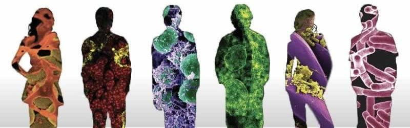 Pattern Wrapped People, microbial medicine