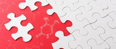 Epigenetics, puzzle pieces