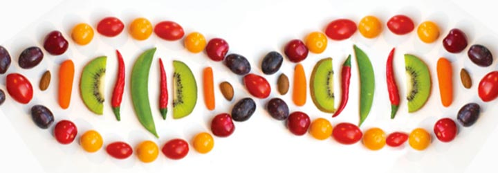 Nutrigenomics, DNA chain shown as food
